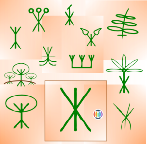 02-Plant
