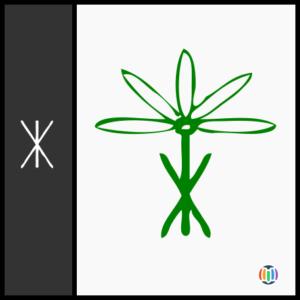 flower (UNIDEO)