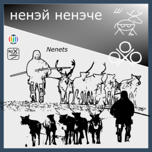 The world of the Nenets