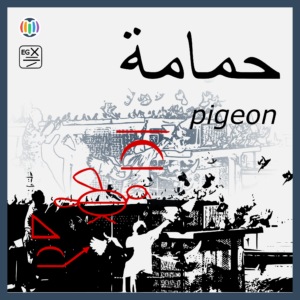 Pigeons from Egypt