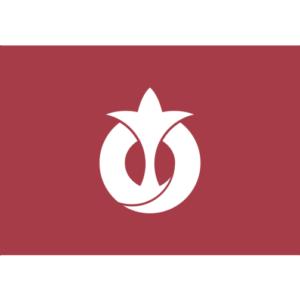 Aichi Prefecture (Flag)